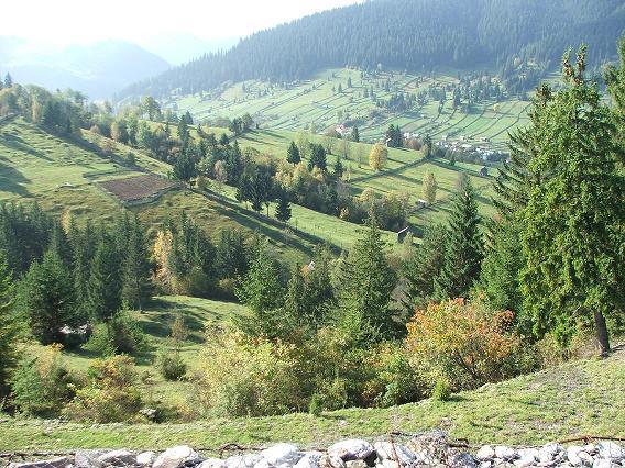 Bucovina, o parte din România reală