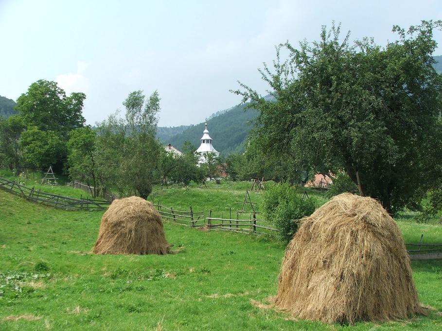 Turismul rural sau cum e să ai succes când începi de la zero