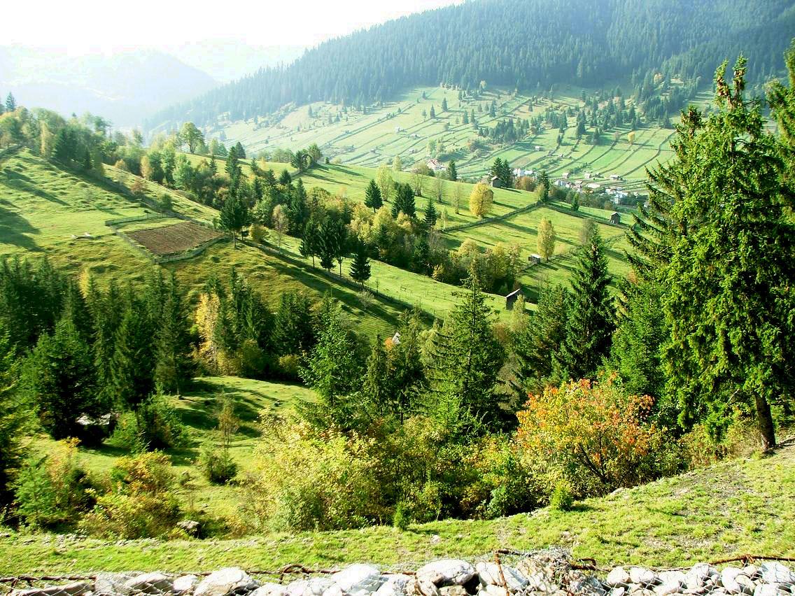 România – o fotografie şi o poveste (14)