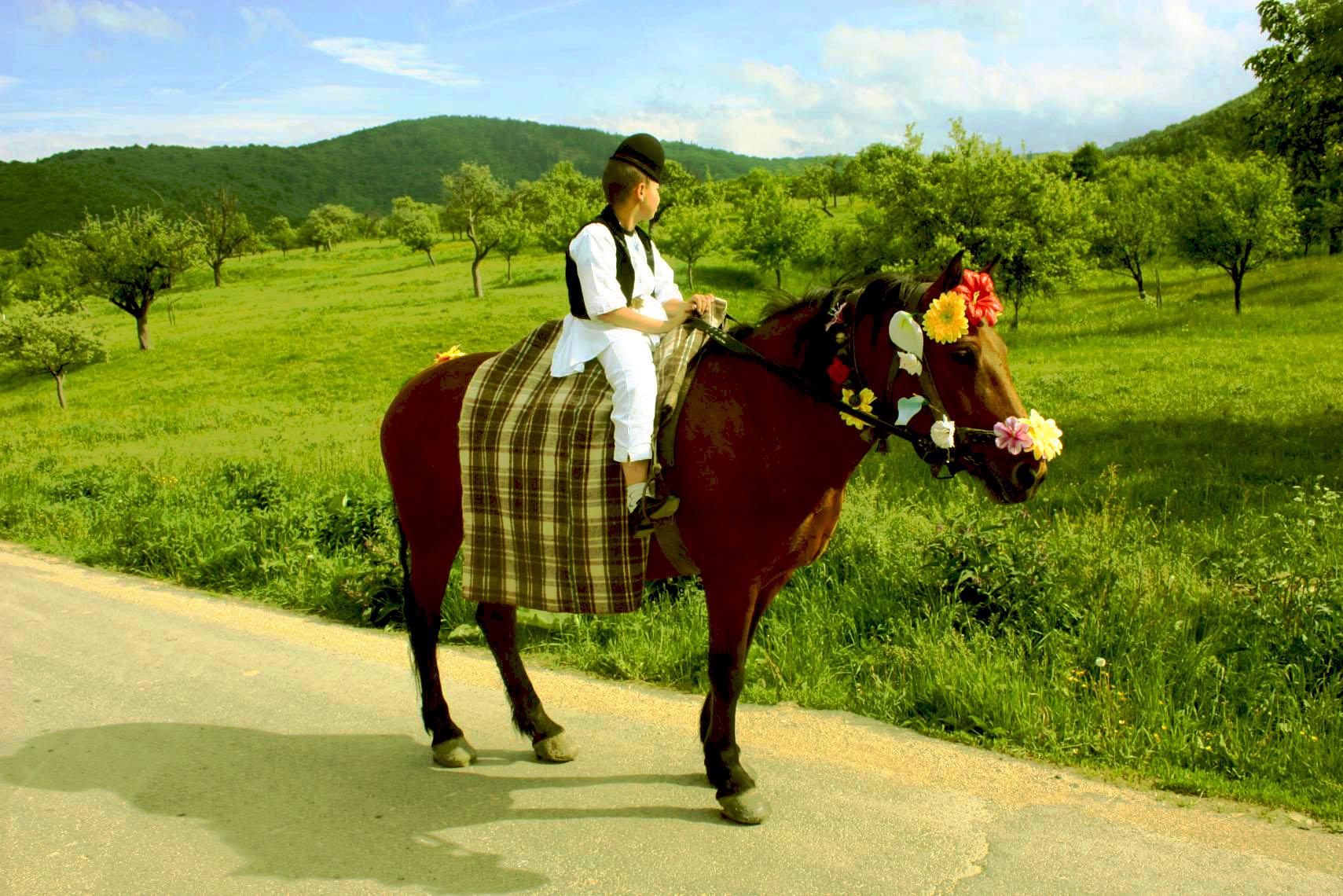 Tânărul cavaler de Sibiel (România – o fotografie şi o poveste / 45)